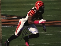 MICHAEL JOHNSON BENGALS SIGNED 8x10 PHOTO